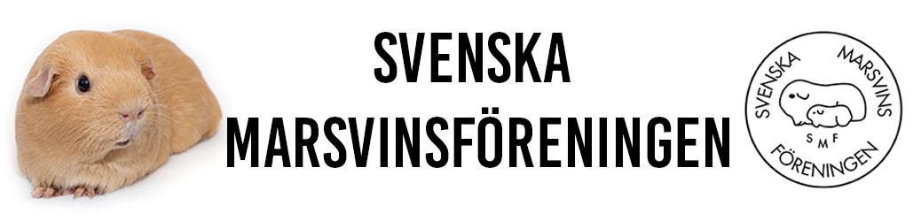 Svenska Marsvinsföreningen